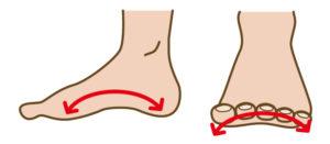 ワイズ整体院の足の歪みの解説