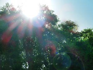 ワイズ整体院の天候気温による身体への影響解説